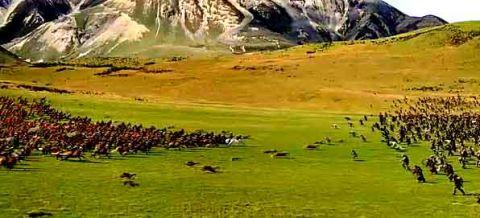 Narnia Battle Scene