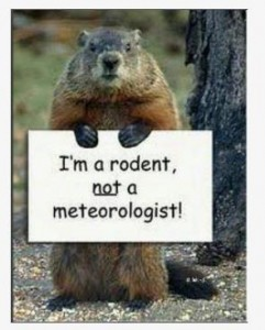 rodent_meteorologist