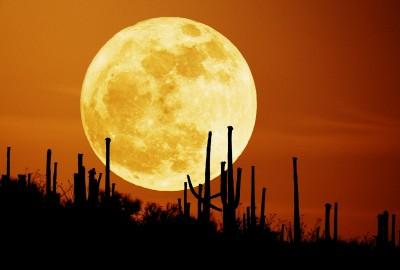 Full Moon Rising over Saguaro National Park