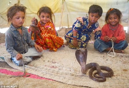 Snake  Charming School